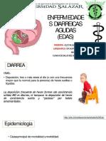 enfermedadesdiarreicas-170810220653-convertido