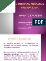 Aparato Excretor - Jeanpierre Quispe
