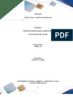 Trabajo Colaborativo – Paso 3 Anàlisis de La Informaciòn..