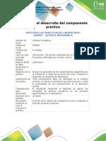 Protocolo para el desarrollo del componente práctico (16_04)
