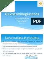glucosaaminoglucanos.pptx