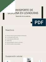Transporte de Glucosa en Levaduras