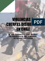 Reporte Violencia Cuerpos Disidentes