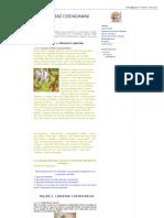 Competencias Ciudadanas_ Ejercicios Prácticos.pdf