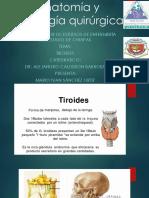 Anatomía y Patología Quirúrgica Tiroides