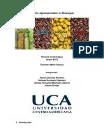 Informe Del Modelo Agroexportador