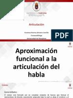 Neuroanatomia Articulación Del Habla