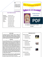 Programa Sr de Los Milagros Actualizado