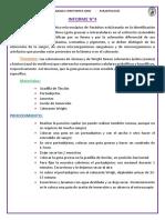 Informe parasitología