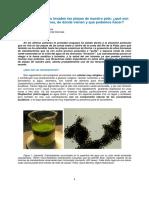 Cianobacterias Divulgación BonillaAubriot Seccion Limnologia 2019