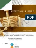 Intestinul-subtire