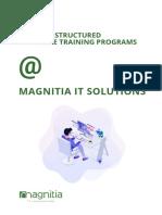 Magnitia IT - Company Profile