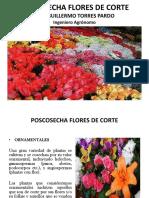 Flores de corte Poscosecha