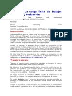 NTP177-cargafisicapostural