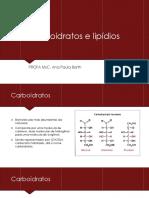 Carboidratos e Lipídios