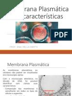 Membrana Plasmática e Suas Características