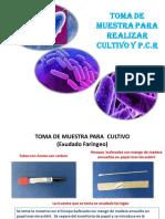 toma de muestra1 DIFTERIA.pdf