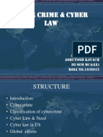 Presentation On Cyber Law