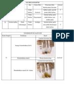 Uji Organoleptis Analgetik Antipiretik