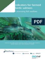Welfare Fish