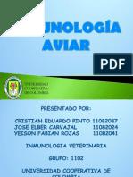 INMUNOLOGIA-AVIAR