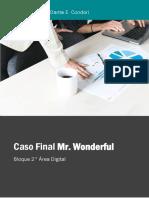 Caso Final Mr. Wonderful.pdf