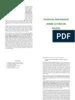 PLÁTICAS ADICIONALES booklet