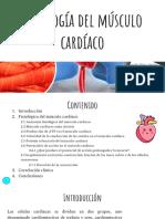 Fisiologia del musculo cardiaco