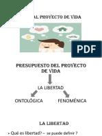 Diapositivas Daño Al Proyecto de Vida