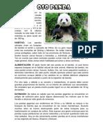 oso panda.docx