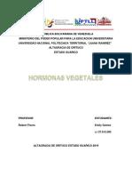 Las Hormonas Vegetales Trabajo Robert Flores