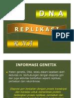 5. Replikasi, Transkripsi, dan Translasi