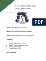 ANOMALIAS POR FACTORES AMBIENTALES (2) (1).docx
