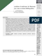 Estrategias que modulan el sindrome de burnout en efermeros-4.pdf