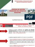 ESTRATEGIA DE GESTIÓN FINANCIERA DEL RIESGO DE DESASTRES