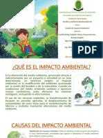 ESTUDIO-DEL-IMPACTO-AMBIENTAL (1)
