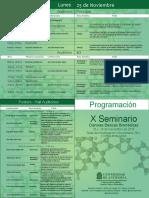 Programacion X Seminario Versión Digital_v_2