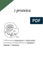 Síntese Proteica – Wikipédia, A Enciclopédia Livre