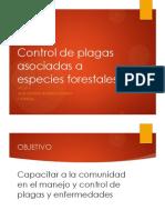 Capacitacion plagas