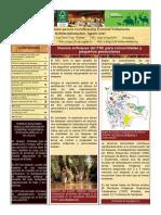 Certificación Forestal en Bolivia - Boletin CFV-agosto2018