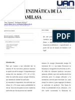 actividad catalitica amilasa