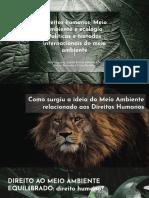 Direitos humanos; Meio ambiente e ecologia Políticas e tratados internacionais do meio ambiente