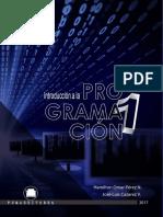 Libro de Programacion I Final