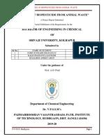 Report Phase 1 biopesticide