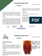 ARANAS 8 pp.pdf