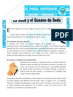 Ficha La Seda y El Gusano de Seda Para Cuarto de Primaria