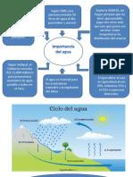 Ecologia Ciclo Del Agua