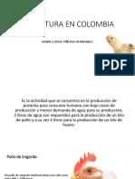 Avicultura en Colombia