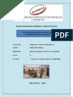 Sustitucion Acumulacion y Denuncia Por Internamiento en Derechos Mineros TERMINADO