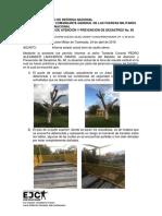 Informe Objetivos Cp. C